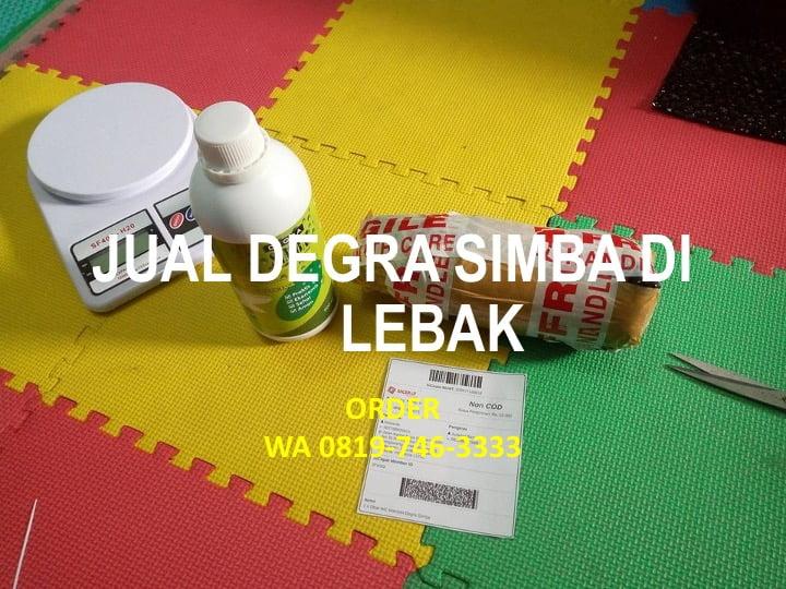 Jual Degra Simba di Kabupaten Lebak | WA 0819-746-3333
